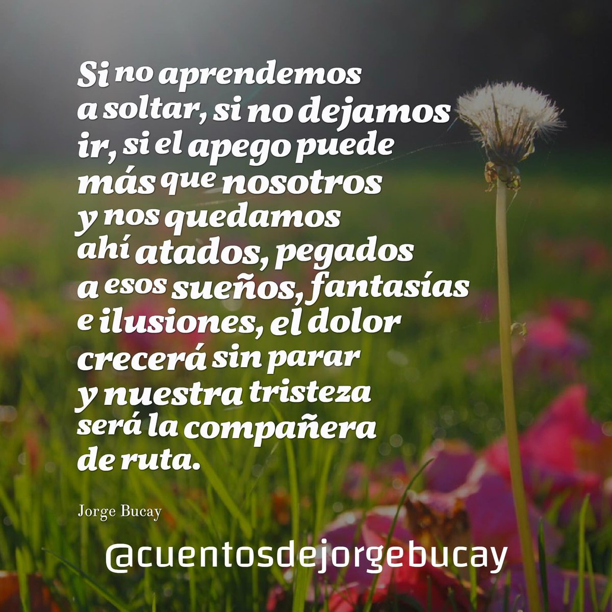 Cuentos Jorge Bucay On Twitter Jorgebucay Bucay Frases