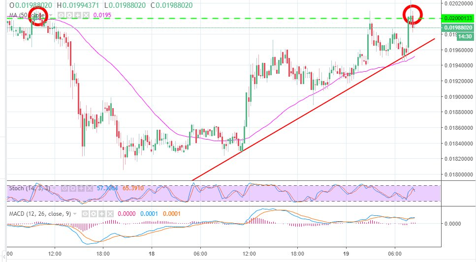 Tron price analysis: Double-top pattern spotted as Binance adds support for TRX/BNB - https://t.co/lk5aOSTYpr