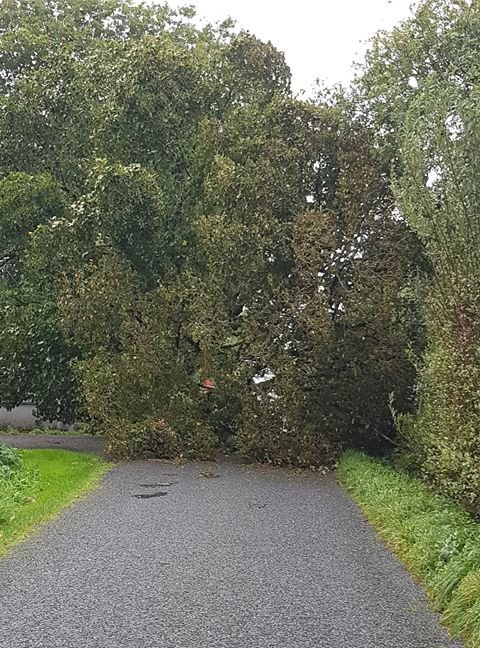 Storm Ali is here, be careful out there folks!