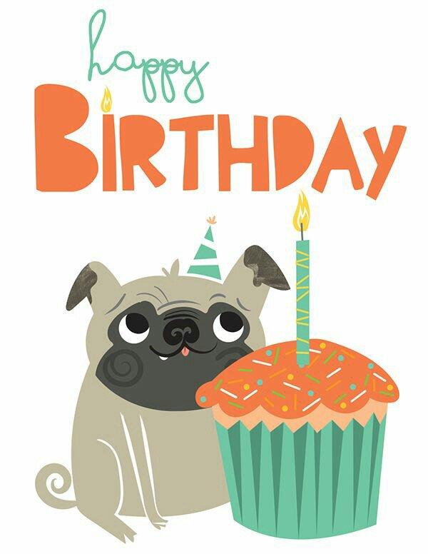 Открытка с днем рождения мопса