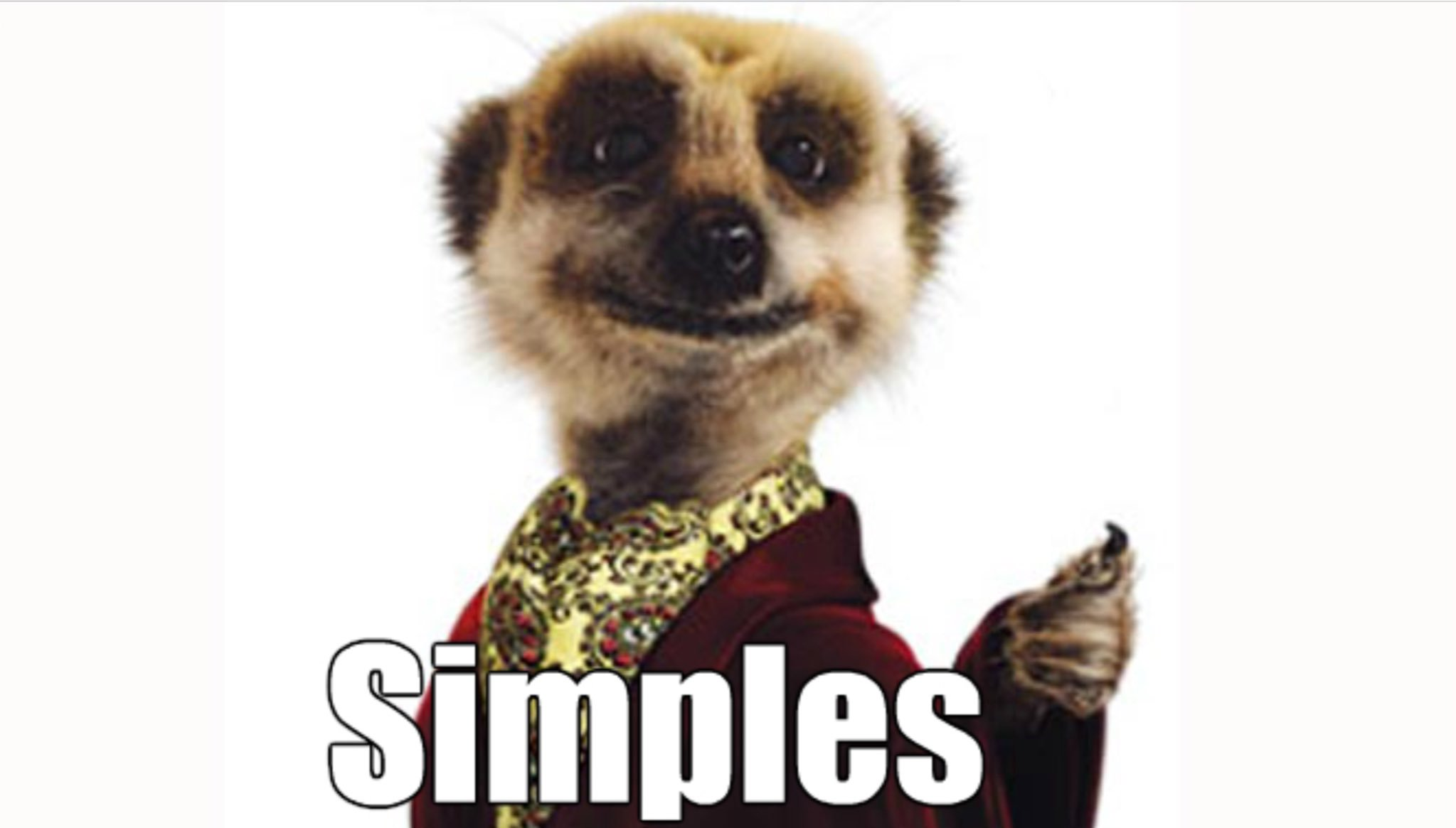 Image result for meerkat simples gif