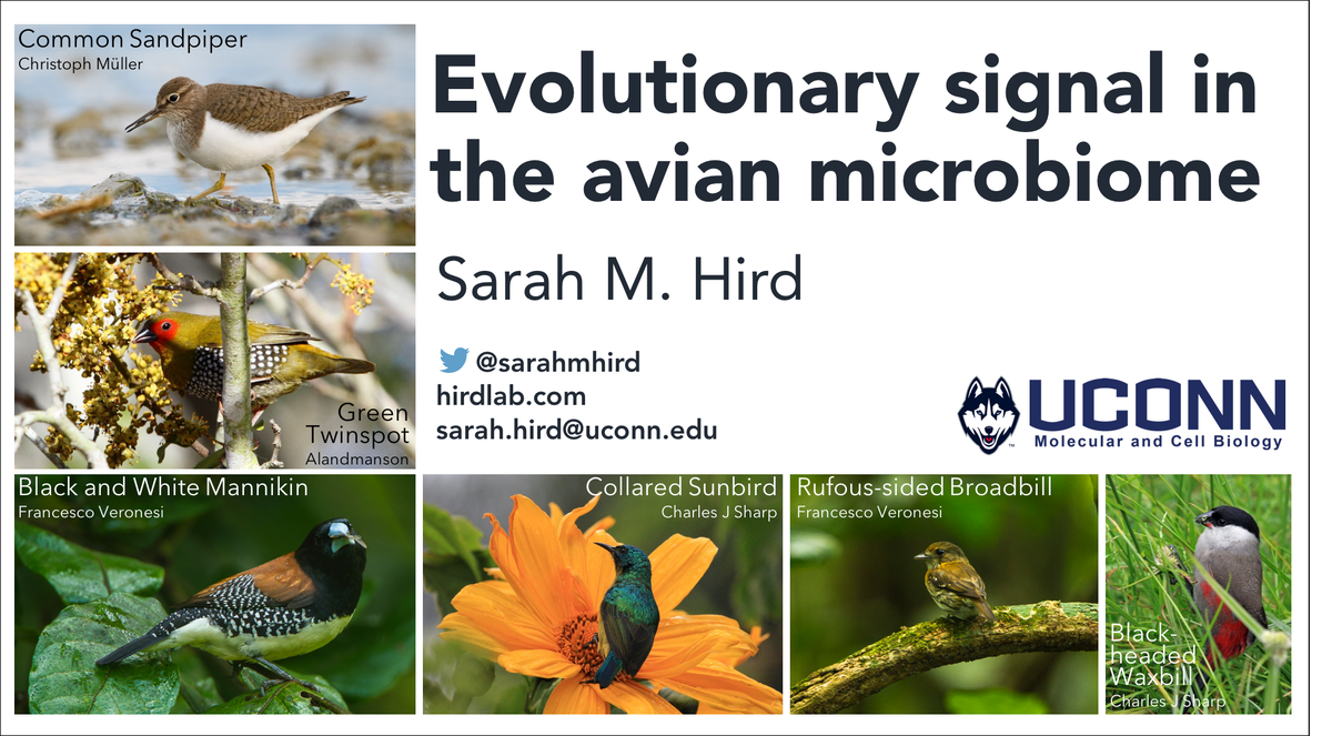 Is it possible to have too many pictures of birds in a talk about birds? Nah... Related: Im headed to the Bioinformatics for the Microbiome Symposium at Stanford on Monday! med.stanford.edu/gbsc/conferenc…