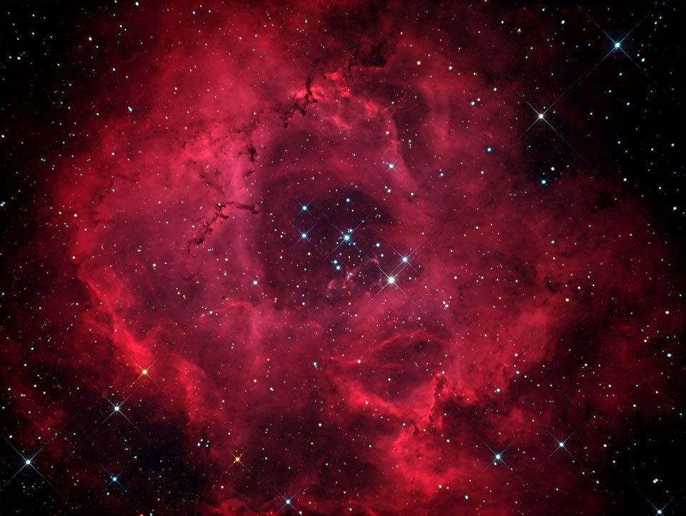 The Rosette Nebula (The Rosette Nebula Image Credit & Copyright: Evangelos Souglakos)