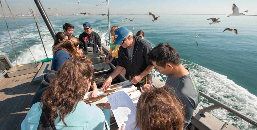 Thanks to a grant from the @NSF, the Vantuna Research Group at Oxy is on its way to making its unique fish and marine invertebrate collection accessible to researchers around the world. oxy.edu/news/marine-bi…