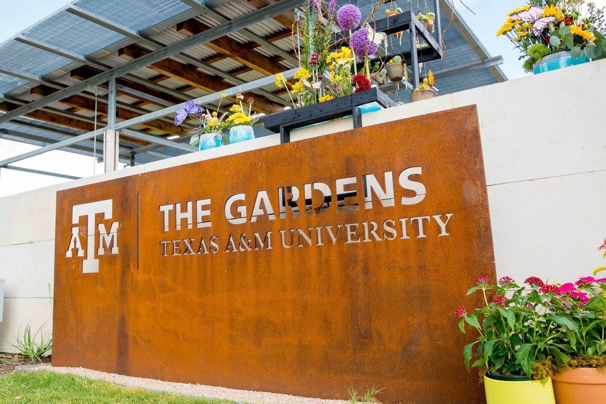 01aeaffa8c7 Texas A M University on Twitter