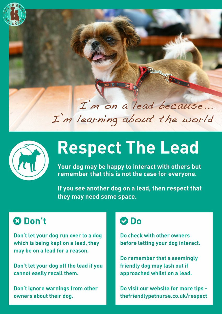 Always remember not every dog wants to be sociable.  Dogs can be on a lead for different reasons.  If you see a dog on a lead recall your dog to avoid causing any unnecessary stress to the other dog #DogTraining #DogBehavior #nervous #DogLover #manners #Respect #ThursdayThoughts<br>http://pic.twitter.com/O6ipylOTP1