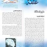 Image for the Tweet beginning: (طور العلقة ):  قال الله