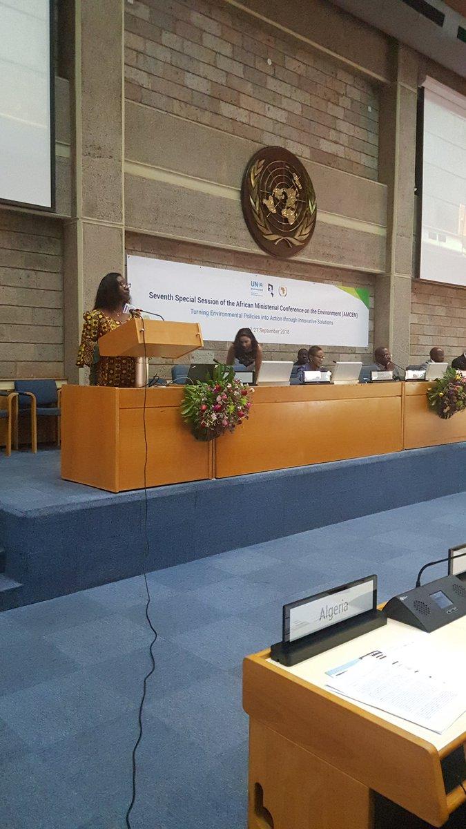 1st Africa Environment Partnership Platform (AEPP)
