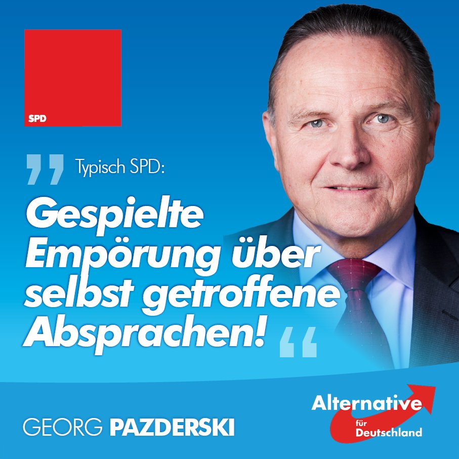 Georg Pazderski's photo on #maaßen
