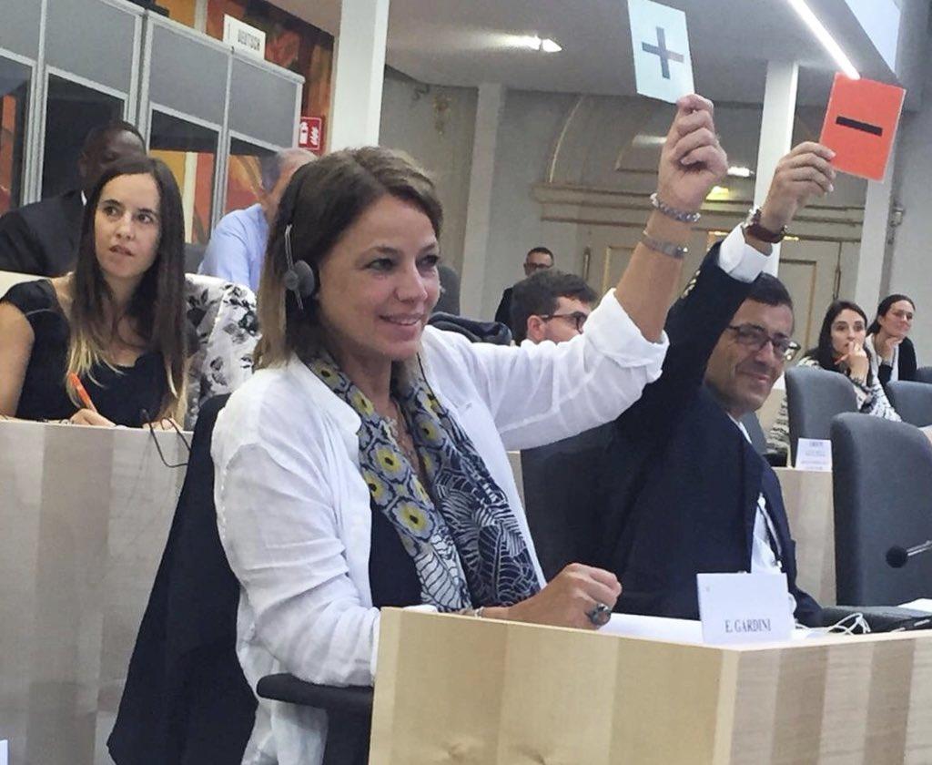 #Votazione dei documenti finali e conclusione dei #lavori all'assemblea Eurolatinoamericana. #Eurolat #Vienna #Europa  - Ukustom