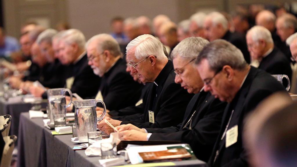 #abusi la Conferenza Episcopale Usa  @USCCB ha deciso: 1)un\