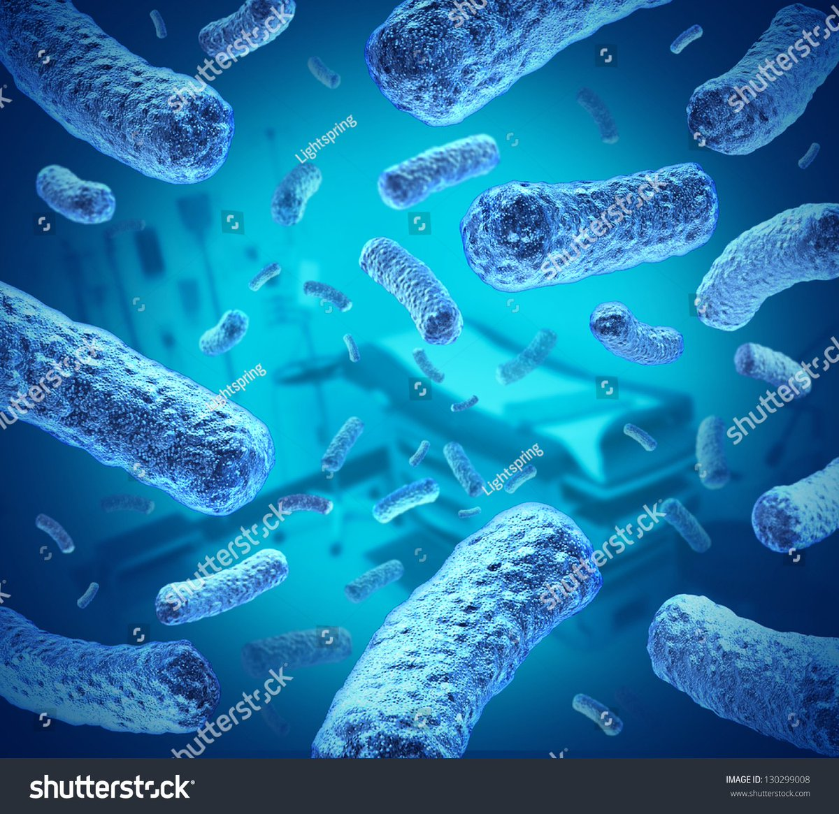 Cellabratelife Hashtag On Twitter Eukaryotic Cells Are Generally Much Larger Than Prokaryotic Ten Times Humans Have About 100 Trillion In Their Body Found This