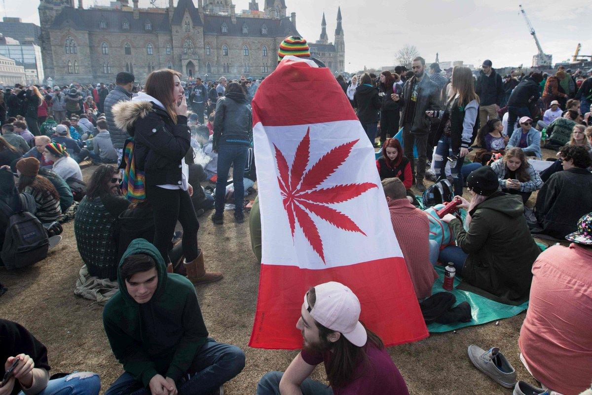 Une société canadienne recrute des 'amateurs' pour tester du cannabis https://t.co/c5PxVnvQBQ