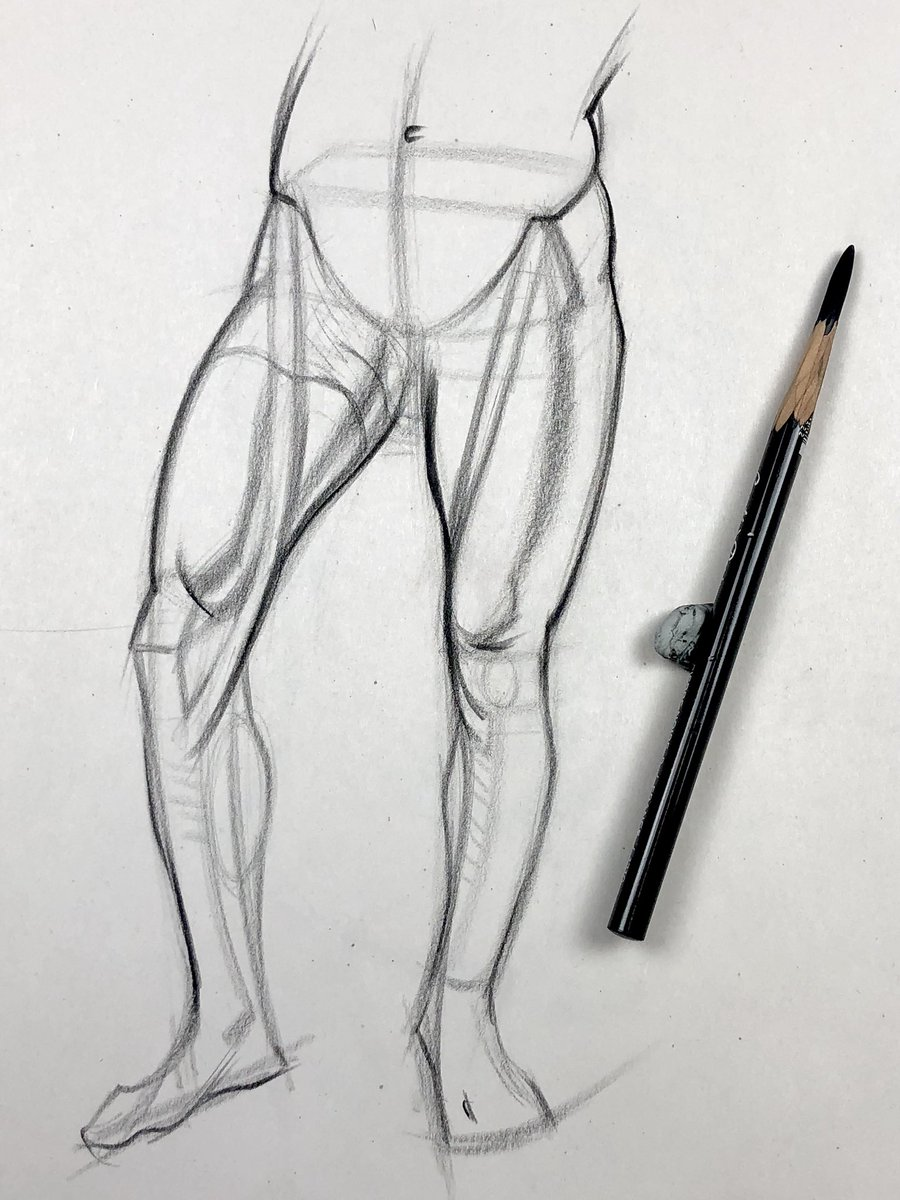 Stan Prokopenko On Twitter Come Join Me As I Draw A Quicksketch Example Of The Inner Leg Muscles You Ll See Me Draw In Real Time From Reference As I Discuss And Dissect