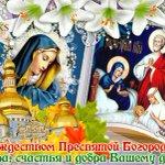 Рождество Пресвятой Богородицы Twitter Photo