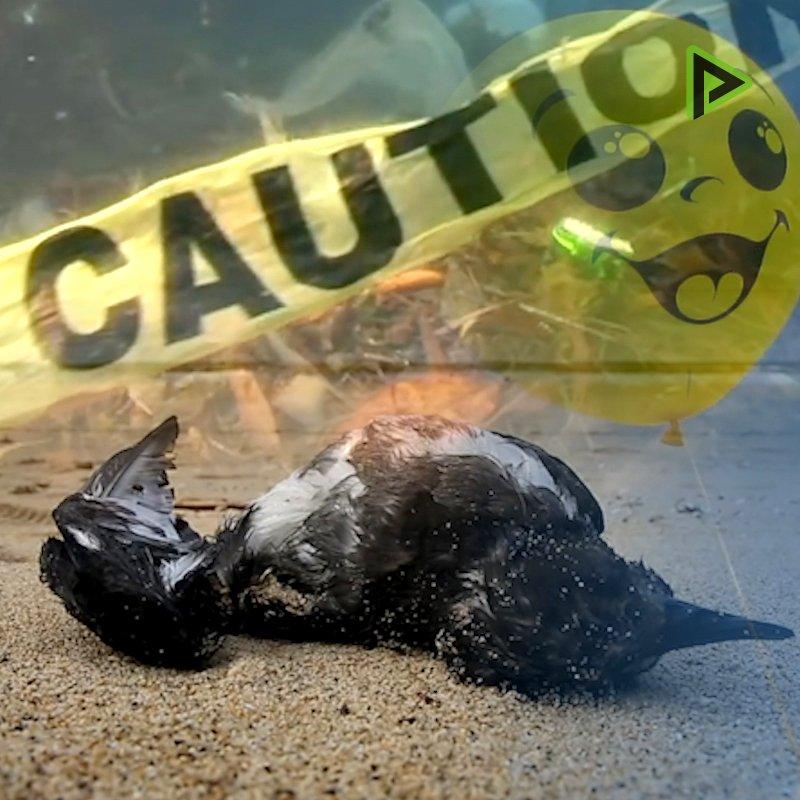 Los globos suponen una condena a muerte para los animales
