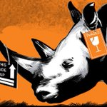 #WorldRhinoDay Twitter Photo