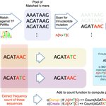 Image for the Tweet beginning: Impact of cancer mutational signatures