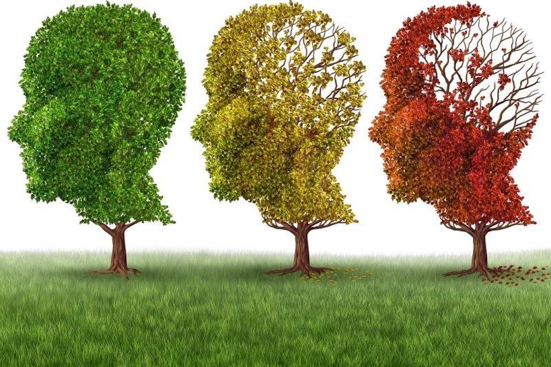 """Boron (ZP): """"#Alzheimer, la #RegioneVeneto al fianco dei malati e delle loro famiglie"""". @fabrizioboron  #ConsiglioVeneto http://bit.ly/2MSLBSJ  - Ukustom"""
