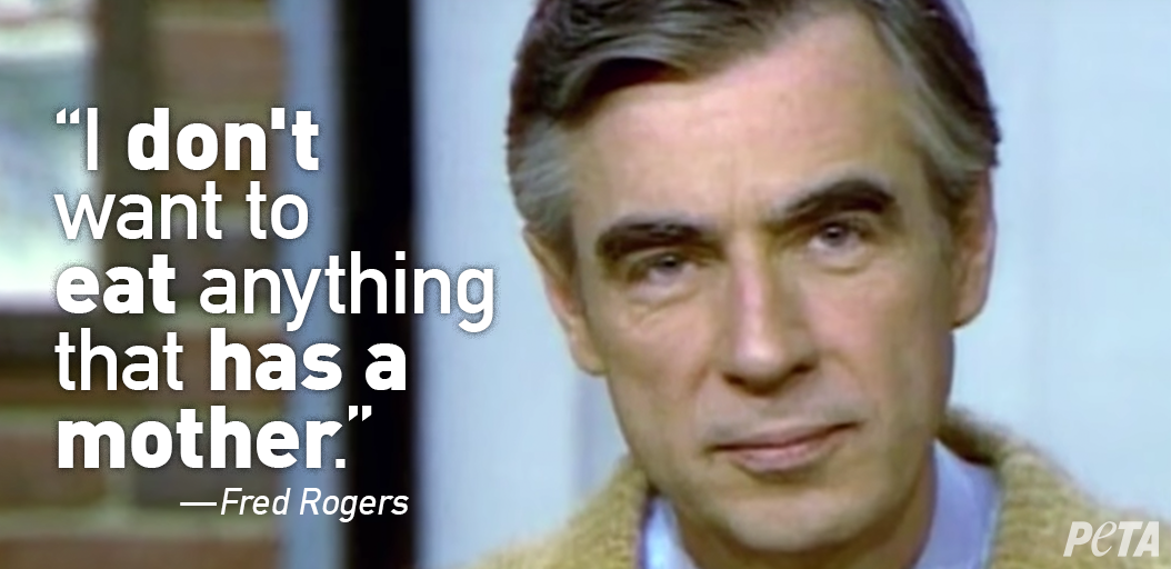 LOVE today's #GoogleDoodle paying tribute to #MisterRogers, who wasn't just a friendly & compassionate neighbor to humans—he often spoke up for animals & was a long-time  ❤🙋♂️#vegetarian