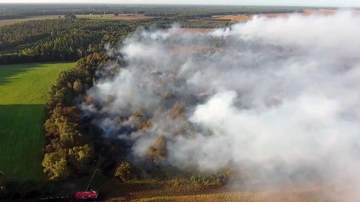 Meistgesehen:  Evakuierungen nicht mehr ausgeschlossen: Riesiger Moorbrand bedroht umliegende Ortschaften https://t.co/99mDpS0ow1 [Video]