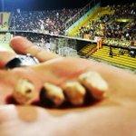 #BeneventoSalernitana Twitter Photo