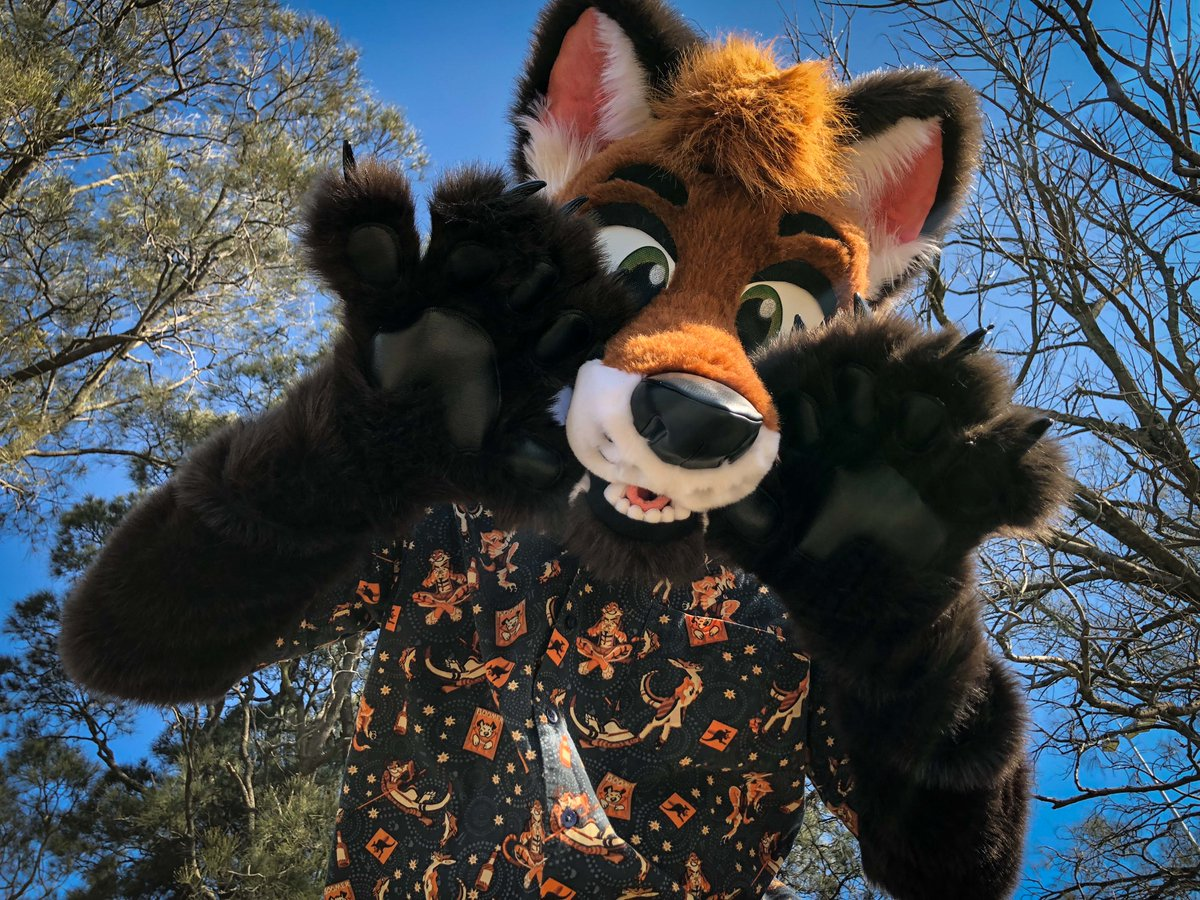 FOX POUNCE!!!!!!   = @Woxplosion   = #FursuitFriday<br>http://pic.twitter.com/kMgrTBsX58