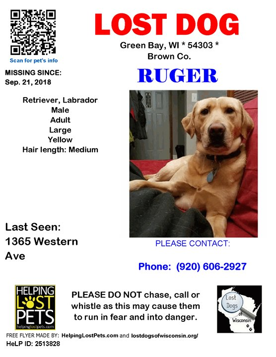 LOST DOG Ruger 09-21-2018! #Brown Co., #GreenBay (1365 Western Ave), WI 54303. Ruger/ Male *** Retriever, Labrador *** Yellow/ Adult/ Large (46~100 lbs)/ Hair Length is Medium/Wearing a brown leather collar. He broke off his ID tag.  Phone: (920) 606-292…  https:// ift.tt/2vNchAj  &nbsp;  <br>http://pic.twitter.com/bVAmqpQsbU