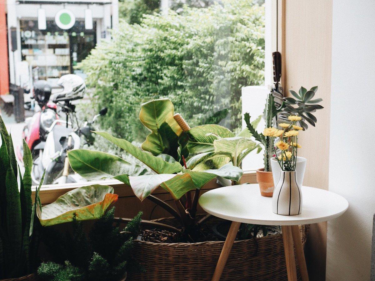 BROWN cafe #reviewchiangmai #chiangmai #เชียงใหม่ #รีวิวเชียงใหม่ #คาเฟ่เชียงใหม่<br>http://pic.twitter.com/jxtRW9HJiA