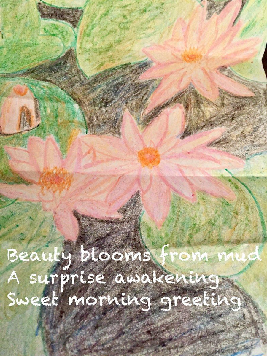 Diane lowman on twitter poetry poem haiku lotus mud diane lowman on twitter poetry poem haiku lotus mud awakening blossom happybirthday morning greeting izmirmasajfo
