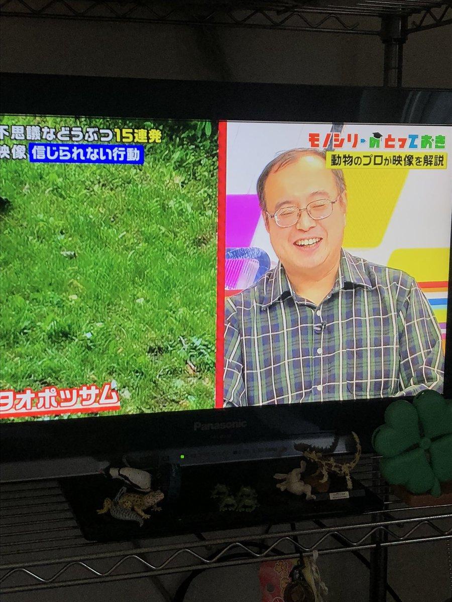 #クレイジージャーニー Latest News Trends Updates Images - rohan_0903