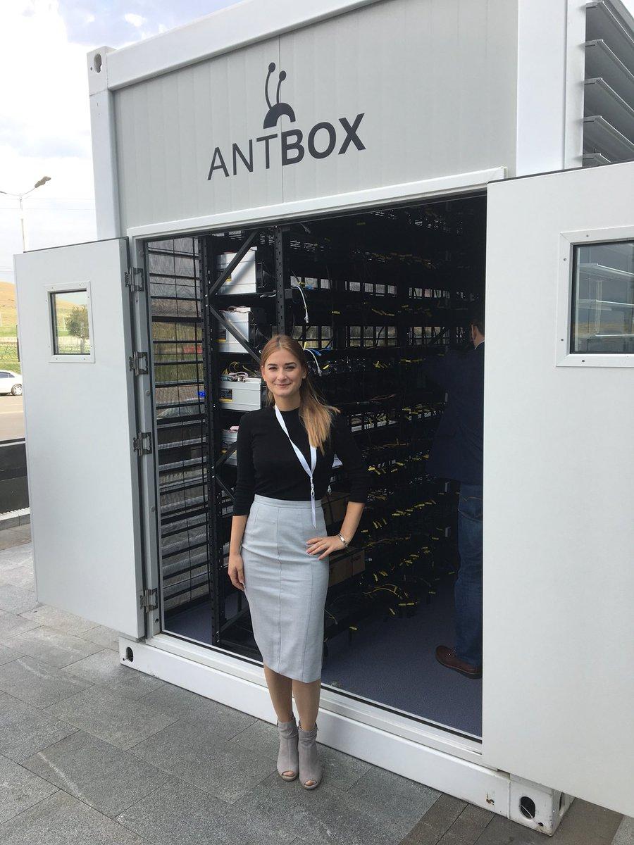 antbox