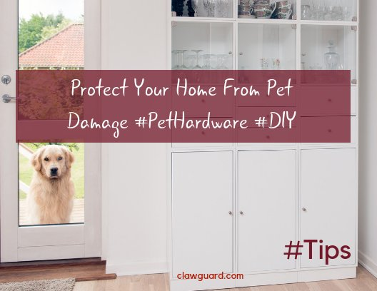 Clawguard On Twitter Stopthedamage Pethardware Is Your Dog