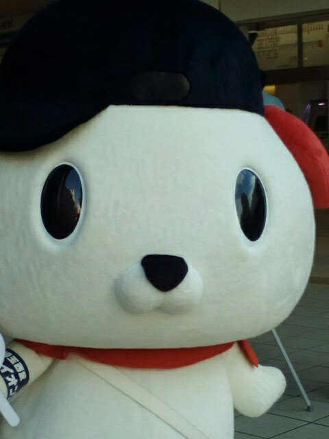 test ツイッターメディア - はっ犬(けん)ワンドゥ氏 #ドアップはっ犬(けん)ワンドゥ氏 #キャンドゥ #キャンドゥ高田馬場店 #東京都新宿区 https://t.co/kC9DFHpohX