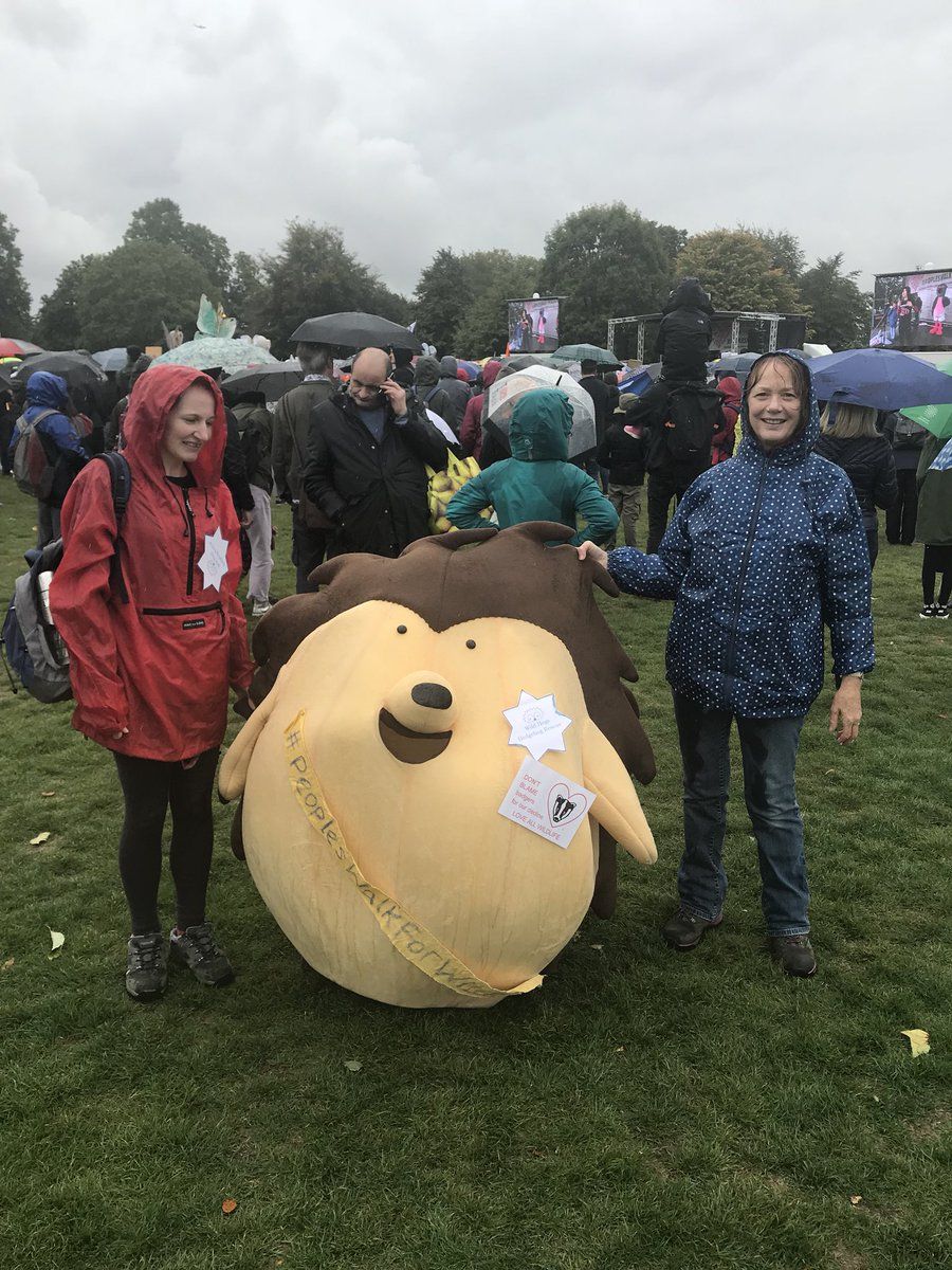 The campaign to save #hedgehogs hits Hyde Park! #PeoplesWalkfForWildlife