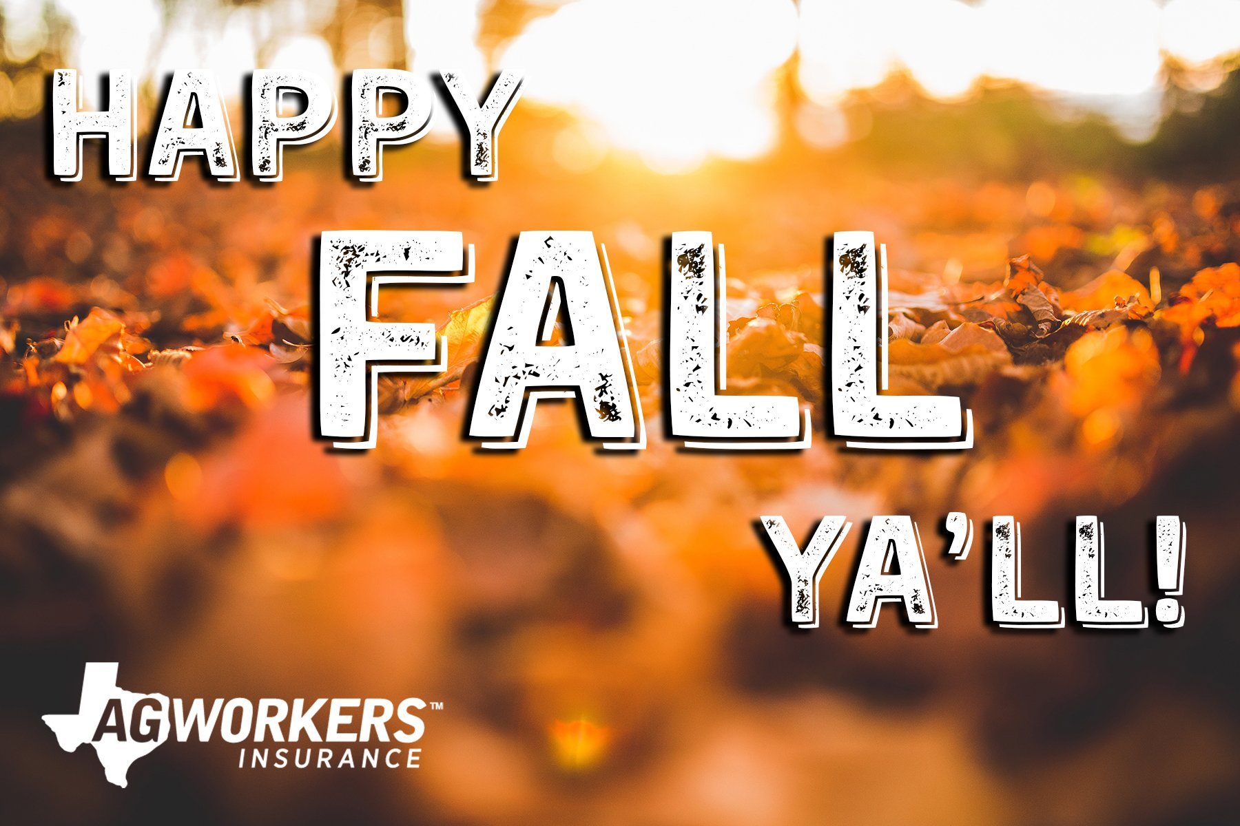Ag Workers Mutual On Twitter Bring On Sweater Weather It S The First Day Of Fall Ya Ll Fallbegins
