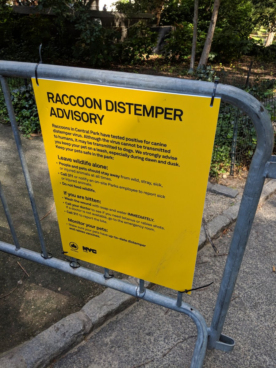 it's a sign that says raccoon distemper advisory.