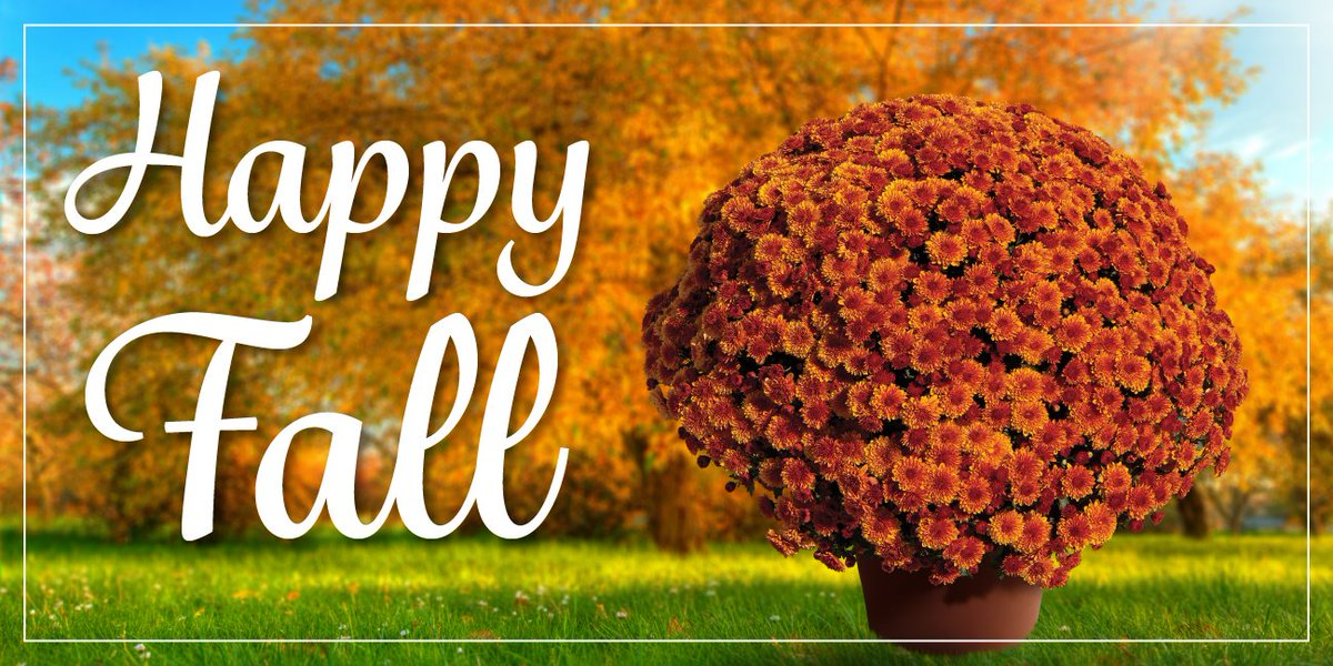 """Syngenta Flowers US on Twitter: """"Happy #FirstDayofFall from the team at  Syngenta Flowers. We hope you had a great summer and we wish you will have  a mum-tastic fall! See more Yoder"""