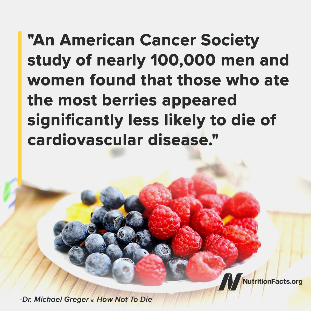 Viral News Webster Terms: Benefits Of Blueberries : Latest News, Breaking News