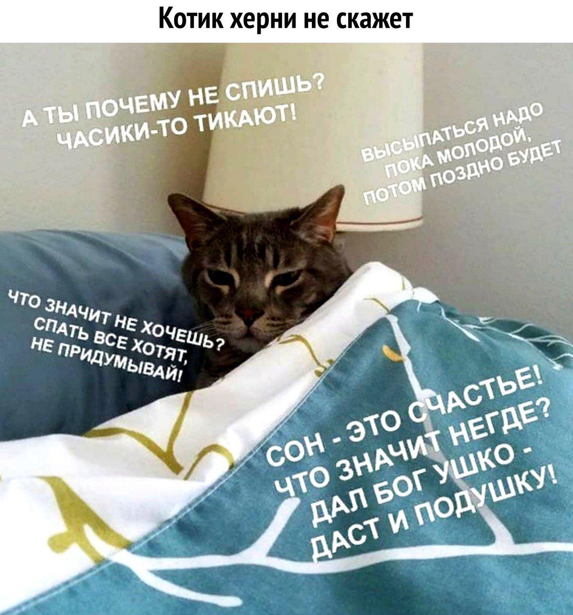 Спать зачем спать картинка
