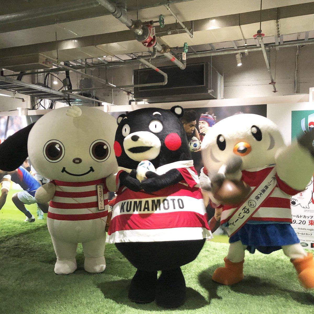 #ラガマルくん #くまモン #ゆりーと も #ラグビーワールドカップ2019 を応援しています!🏉