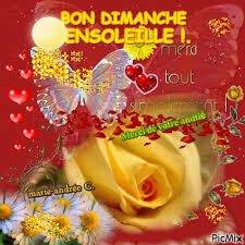Gisèlemorin1 Ns Mat10771 S Tweet Bonjour Bon