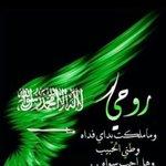 #ما_مثله_وطن Twitter Photo
