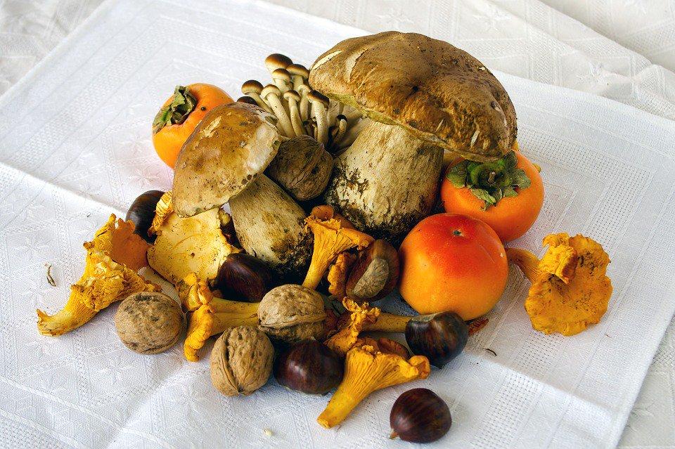 Le proprietà dei #Funghi, poche calorie e tanti benefici per l\