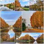 #Herbstanfang Twitter Photo
