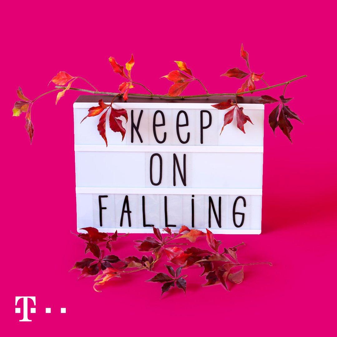 Social Media Post: Heute ist kalendarischer Herbstanfang. #hellofall...