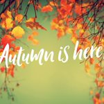 Image for the Tweet beginning: It's finally #Autumn - One