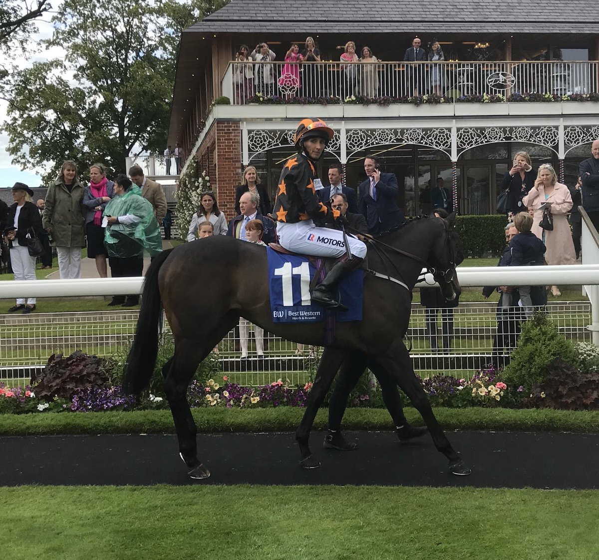 Golconda Prince runs today @HamiltonParkRC with Paul on board and Sugar Coating has been declared @NewcastleRaces tomorrow evening with @Tonyhamilton83 in the saddle. Get involved and join the club today! https://t.co/WnaDJpcabU