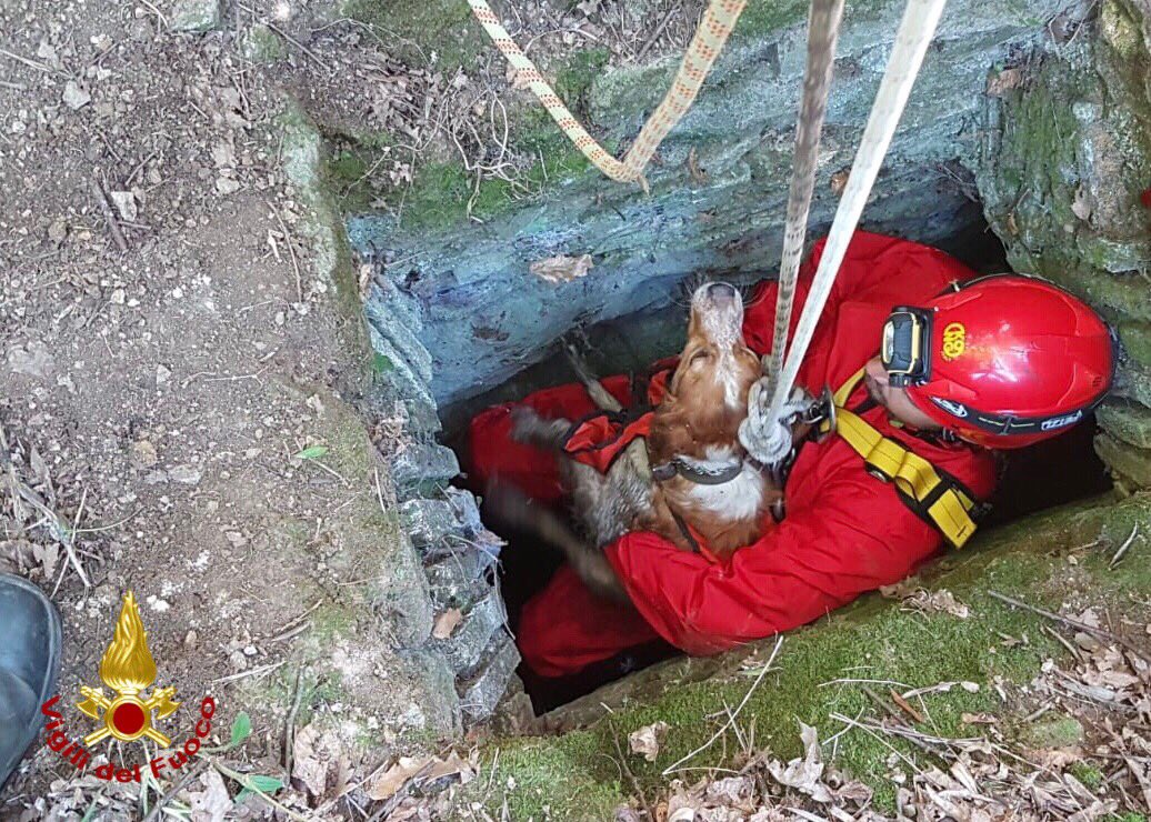 #Mentana (RM) #23set, salvato, grazie a tecniche di calata e recupero speleo alpino fluviali, un cane caduto in un pozzo profondo 15 metri #salvataggiquotidiani  - Ukustom