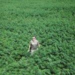 US attorney files civil suit against WV hemp farm   https://t.co/ZSRx1XE9Mc #MME #Hemp #Hempseeds #Hempoil #WV #WestVirgnia